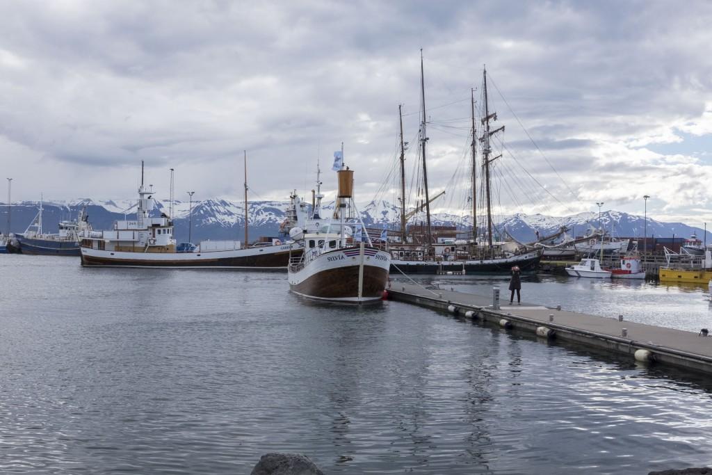 iceland176